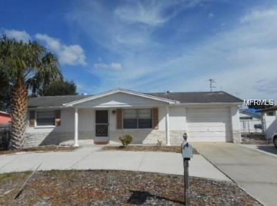 Port Richey Single Family Home For Sale: 11630 Meadow Drive