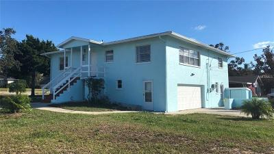 Tarpon Springs Single Family Home For Sale: 462 S Florida Avenue