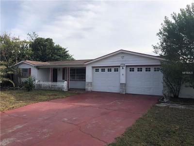 Pasco County Single Family Home For Sale: 5300 Skyland Drive