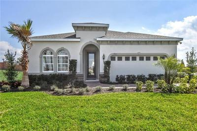 Pasco County Single Family Home For Sale: 18625 Hunters Meadow Walk