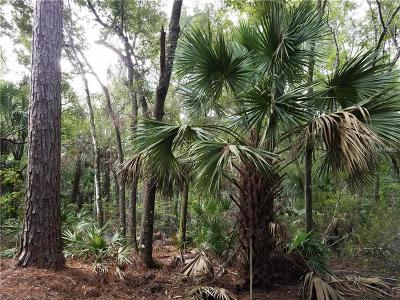 Levy County Residential Lots & Land For Sale: 0000 SW 30th