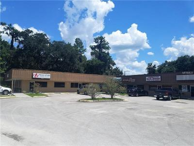 Hernando County Commercial For Sale: 18640 Cortez Boulevard