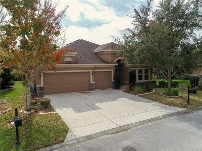 New Port Richey Single Family Home For Sale: 11302 Tayport Loop
