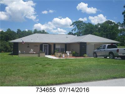 Spring Hill Single Family Home For Sale: 4433 Bayridge Court