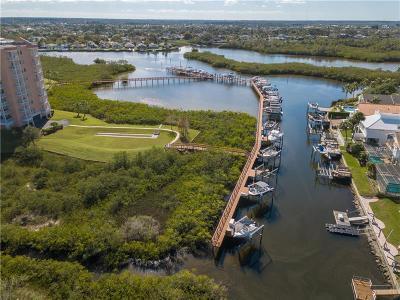 New Port Richey Condo For Sale: 4516 Seagull Drive #303