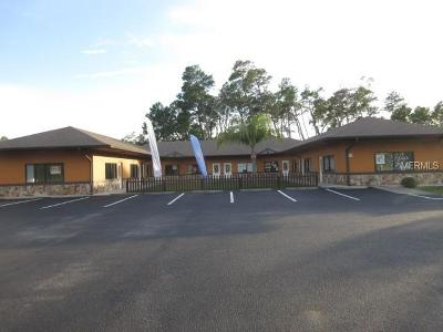 Hernando County Commercial For Sale: 6175 Deltona Boulevard #101