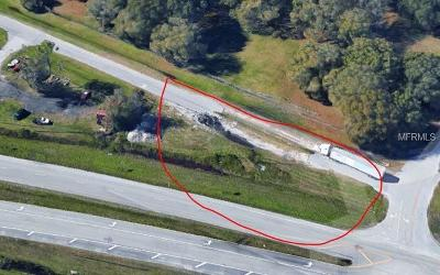 Lutz Residential Lots & Land For Sale: 25225 Wesley Chapel Boulevard