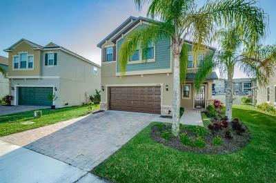 New Port Richey Single Family Home For Sale: 11798 Lake Boulevard