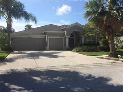 Hernando County, Hillsborough County, Pasco County, Pinellas County Single Family Home For Sale: 5235 Strike The Gold Lane