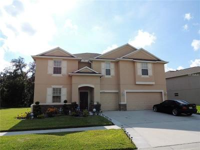 Hillsborough County, Pasco County, Pinellas County Single Family Home For Sale: 13956 Bee Tree Court