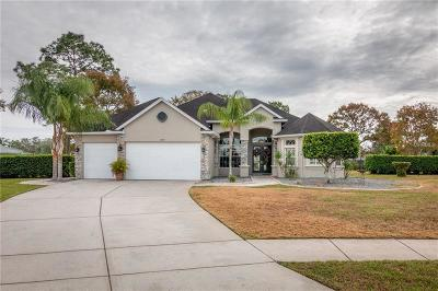 Spring Hill Single Family Home For Sale: 14257 Cascora Court