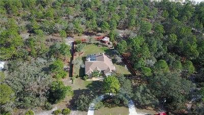Weeki Wachee Single Family Home For Sale: 7344 Mandrake Road