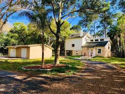Pinellas Park Single Family Home For Sale: 8975 62nd Street N