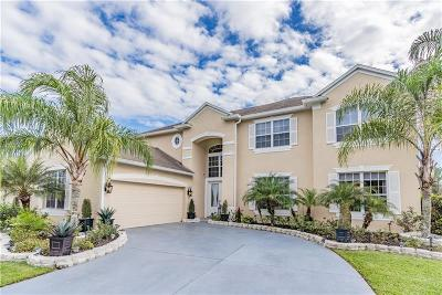 Wesley Chapel Single Family Home For Sale: 27014 Shoregrass Drive
