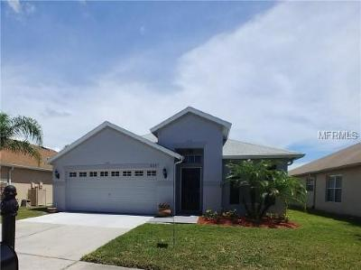 New Port Richey Single Family Home For Sale: 9722 Patrician Drive
