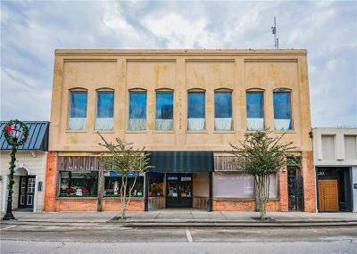 Hernando County Commercial For Sale: 115 N Main Street