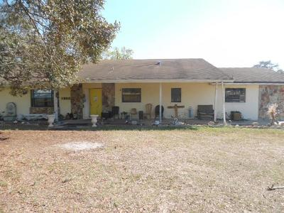 Hudson Single Family Home For Auction: 9328 Fred Street