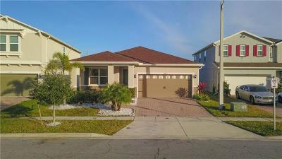 Kissimmee Single Family Home For Sale: 2548 Needlepoint Street