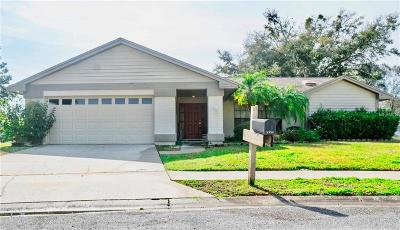 New Port Richey Single Family Home For Sale: 9854 Lopez Drive