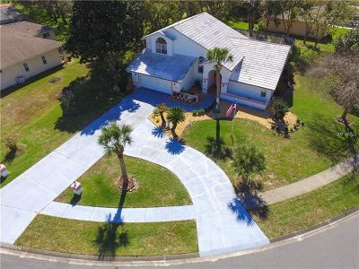 Spring Hill Single Family Home For Sale: 10326 Palmgren Lane