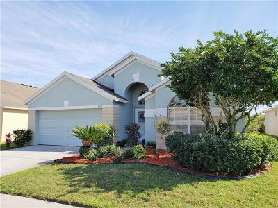 New Port Richey Single Family Home For Sale: 2540 Palesta Drive