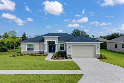 Hernando County Single Family Home For Sale: 13129 Linzia Lane