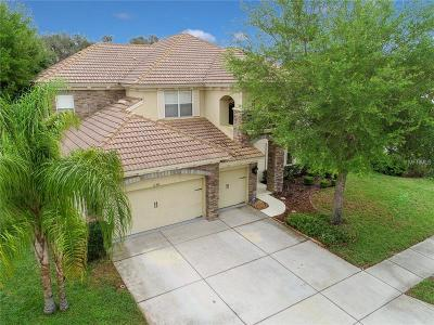 New Port Richey Single Family Home For Sale: 11341 Biddeford Place