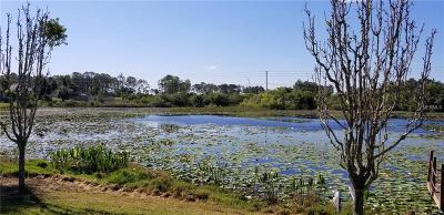 Spring Hill Residential Lots & Land For Sale: 229 Galaxy Avenue