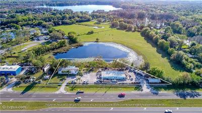 Commercial For Sale: 6311 Land O Lakes Boulevard