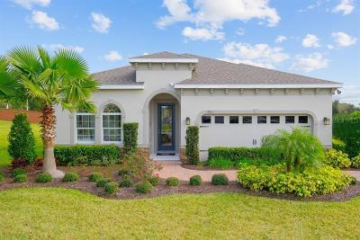 Riverview Single Family Home For Sale: 11408 Hudson Hills Lane