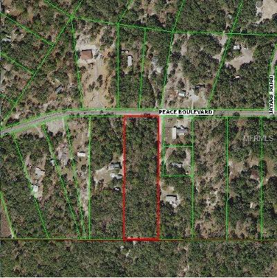 Hudson Residential Lots & Land For Sale: Peace Peace Boulevard