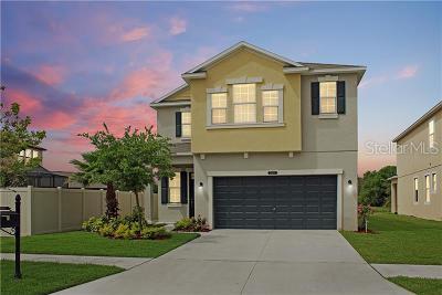 Land O Lakes Single Family Home For Sale: 21211 Southern Charm Drive