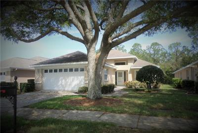 New Port Richey Single Family Home For Sale: 1110 Daleside Lane
