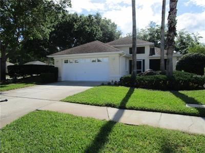 Hernando County, Hillsborough County, Pasco County, Pinellas County Single Family Home For Sale: 14108 Agua Clara Drive