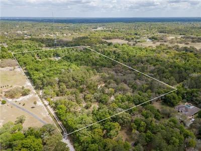 Hudson Residential Lots & Land For Sale: 11112 Patrick Avenue
