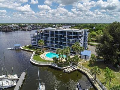 Port Richey Condo For Sale: 4823 Ebbtide Lane #404