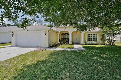 New Port Richey, New Port Richie Single Family Home For Sale: 12152 Roseland Drive