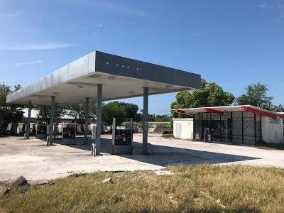 Pasco County Commercial For Sale: 4449 Grand Boulevard