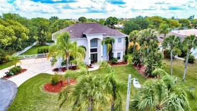 New Port Richey Single Family Home For Sale: 4353 Dewey Drive