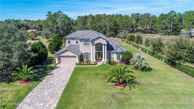 Weeki Wachee Single Family Home For Sale: 9401 Hernando Ridge Road