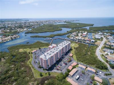 New Port Richey Condo For Sale: 4516 Seagull Drive #705
