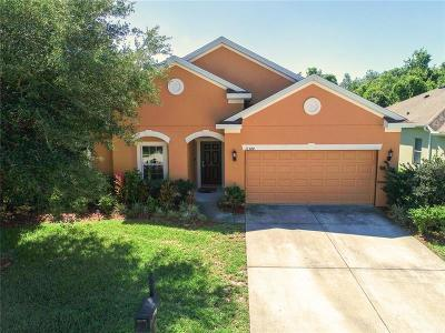 New Port Richey, New Port Richie Single Family Home For Sale: 11344 Tayport Loop