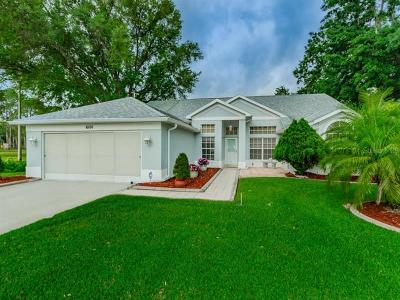 New Port Richey Single Family Home For Sale: 6101 Hidden Trail Court