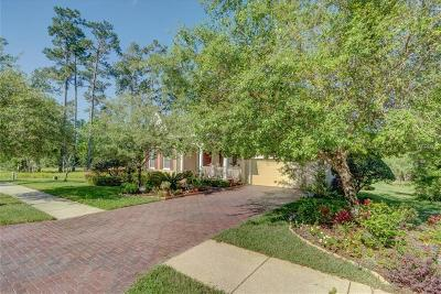 Brooksville Single Family Home For Sale: 5795 Summit View Drive