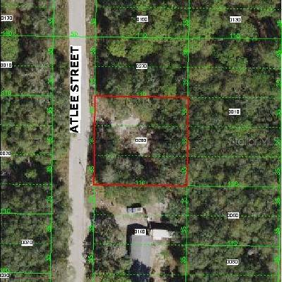 New Port Richey Residential Lots & Land For Sale: 0 Atlee Street