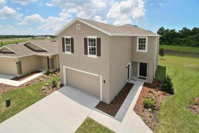 Winter Haven Single Family Home For Sale: 1265 Haines Drive