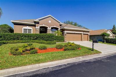 New Port Richey Single Family Home For Sale: 1639 Nodding Thistle Drive