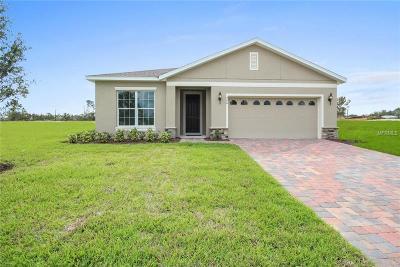 Orange City Single Family Home For Sale: 990 Glazebrook Loop