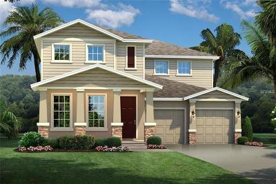 Winter Garden Single Family Home For Sale: 16043 Malay Ginger Drive
