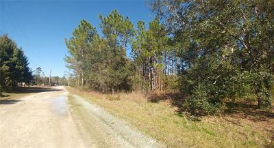 Homosassa Residential Lots & Land For Sale: 5775 S Candy Cane Drive